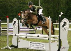 Bild eines/einer Pony