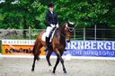 Carl 9-year-old Höven gelding looking for new home!