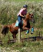 Ponystute super schick & lieb